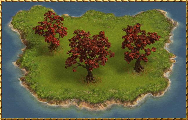 Diario degli sviluppatori vivaio di alberi esotici e for Vivaio alberi